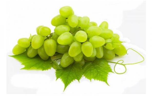 sour grape berries